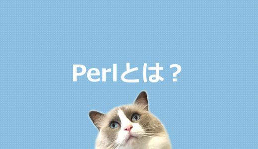 Perlとは?プログラミング言語を初心者にもわかりやすく解説