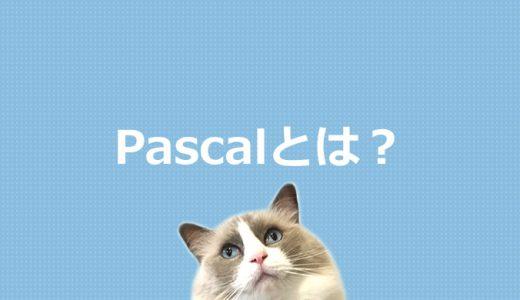 Pascalとは?プログラミング言語を初心者にもわかりやすく解説